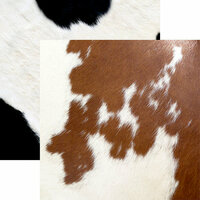 Ella and Viv Paper Company - Animal Kingdom Collection - 12 x 12 Double Sided Paper - Cow