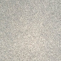 Ella and Viv Paper Company - Sparkle Collection - 12 x 12 Glitter Paper - Silver