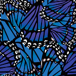 Ella and Viv Paper Company - The Butterfly Effect Collection - 12 x 12 Paper - Butterfly Wings