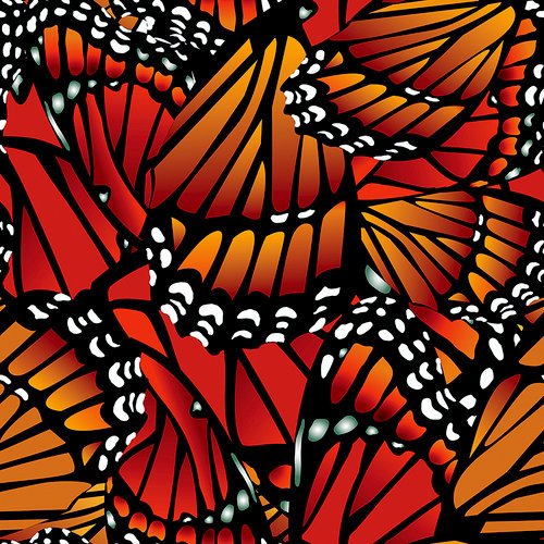 Ella and Viv Paper Company - The Butterfly Effect Collection - 12 x 12 Paper - Monarch Butterfly
