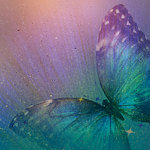 Ella and Viv Paper Company - The Butterfly Effect Collection - 12 x 12 Paper - Magical Butterfly