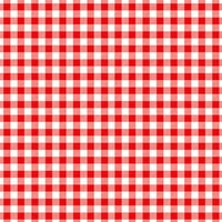 Ella and Viv Paper Company - Perfectly Plaid Collection - 12 x 12 Paper - Picnic Plaid
