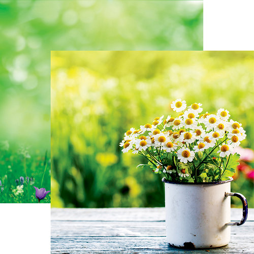 Reminisce - Hello Spring Collection - 12 x 12 Double Sided Paper - Cup O'Daisies
