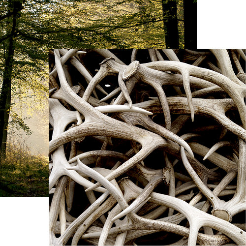 Reminisce - Hunters Paradise Collection - 12 x 12 Double Sided Paper - Antlers