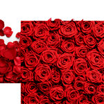 Reminisce - Made with Love Collection - 12 x 12 Double Sided Paper - Red Roses