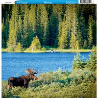 Reminisce - Customs Collection - 12 x 12 Single Sided Paper - Alaskan Moose