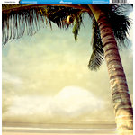 Reminisce - Tropical Collection - 12 x 12 Double Sided Paper - Vintage Palm Tree