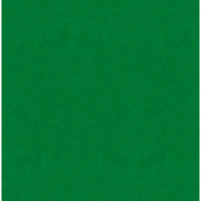 Real Sports Collection - 12 x 12 Glossy Paper - On the Green