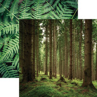 Ella and Viv Paper Company - Scandinavian Woodland Collection - 12 x 12 Double Sided Paper - Lush Nature