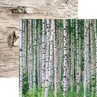 Ella and Viv Paper Company - Scandinavian Woodland Collection - 12 x 12 Double Sided Paper - Birch Wood