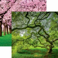 Reminisce - The Journey Beyond Collection - 12 x 12 Double Sided Paper - Tree of Hope