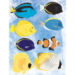 Reminisce - Under The Sea Collection - Seaworld - 3 Dimensional Stickers - Saltwater Fish