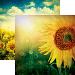 Reminisce - Vintage Day Collection - 12 x 12 Double Sided Paper - Vintage Sunflower