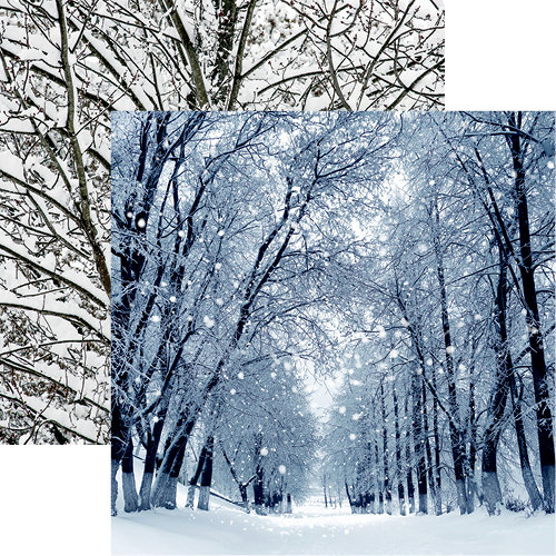 Reminisce - Winter is Coming Collection - 12 x 12 Double Sided Paper - Winter Park