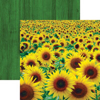 Reminisce - Wildflower Collection - 12 x 12 Double Sided Paper - Sunflower Field