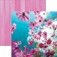 Reminisce - Wildflower Collection - 12 x 12 Double Sided Paper - Cosmos Flower Field