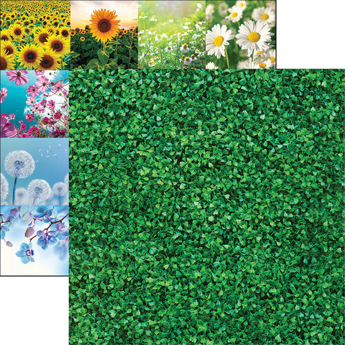 Reminisce - Wildflower Collection - 12 x 12 Double Sided Paper - Wall of Ivy