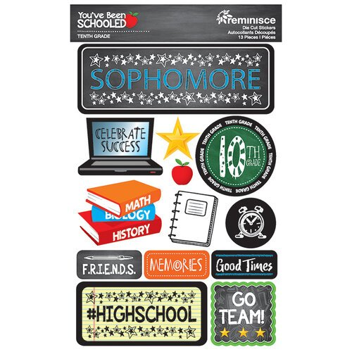 Reminisce - Youve Been Schooled Collection - 3D Cardstock Stickers - 10th Grade