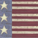 Rusty Pickle Patterned Paper - Stars and Stripes