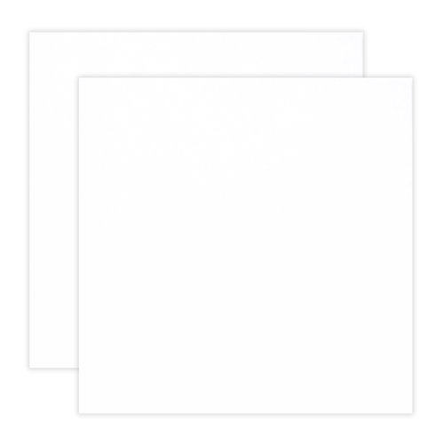 Scrapbook.com - 12 x 12 Chipboard - 1X Heavy - 50pt - White 2 Side - 2 Sheets