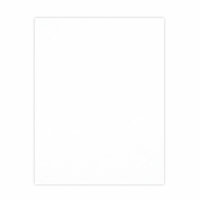 Scrapbook.com - 8.5 x 11 Chipboard - 1X Heavy - 50pt - White 2 Side - One Sheet