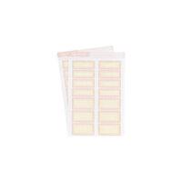 Studio Calico - Color Theory - Label Sticker - Pink Lemonade Scallop
