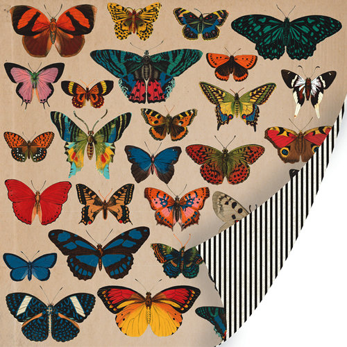 SEI - Field Notes Collection - 12 x 12 Double Sided Blue Foil Paper - Butterfly Collection
