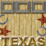 Scrapbook Customs - United States Collection - Texas - 12 x 12 Paper - Wood