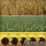 Scrapbook Customs - United States Collection - Kansas - 12 x 12 Paper