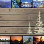 Scrapbook Customs - United States Collection - Oregon - 12 x 12 Paper