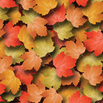 Scrapbook Customs - United States Collection - 12 x 12 Paper - Autumn Leaves