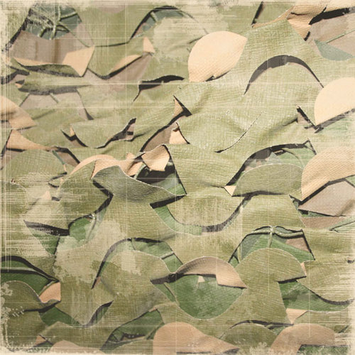 Scrapbook Customs - World Collection - South Korea - 12 x 12 Paper - Green Net Camouflage