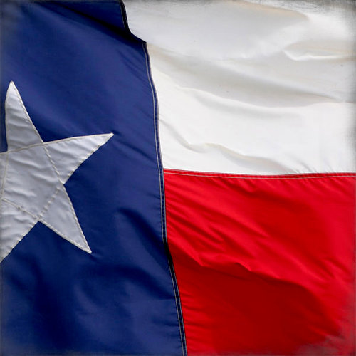 Scrapbook Customs - United States Collection - Texas - 12 x 12 Paper - Flag