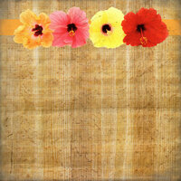 Scrapbook Customs - United States Collection - Hawaii - 12 x 12 Paper - Hibiscus Floral Border