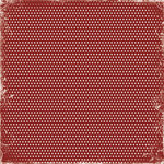 Scrapbook Customs - World Collection - Bolivia - 12 x 12 Paper- Discover Dots