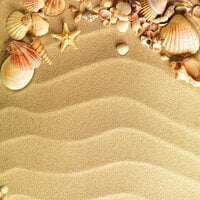 Scrapbook Customs - Travel Collection - 12 x 12 Paper - Sea Shells and Sand