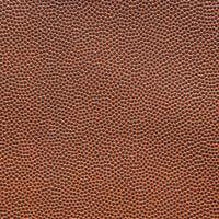 Scrapbook Customs - 12 x 12 Paper - Football Texture