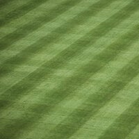 Scrapbook Customs - Sports Collection - 12 x 12 Paper - Ball Field Grass Checkerboard