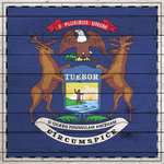 Scrapbook Customs - State Sightseeing Collection - 12 x 12 Paper - Wood Flag - Michigan