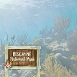 Scrapbook Customs - United States National Parks Collection - 12 x 12 Double Sided Paper - Watercolor - Biscayne