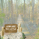 Scrapbook Customs - United States National Parks Collection - 12 x 12 Double Sided Paper - Watercolor - Congaree