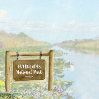 Scrapbook Customs - United States National Parks Collection - 12 x 12 Double Sided Paper - Watercolor - Everglades