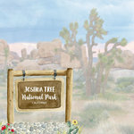 Scrapbook Customs - United States National Parks Collection - 12 x 12 Double Sided Paper - Watercolor - Joshua Tree