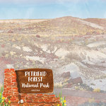 Scrapbook Customs - United States National Parks Collection - 12 x 12 Double Sided Paper - Watercolor - Petrified Forest