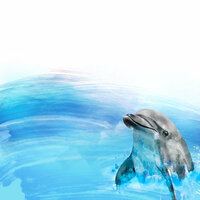 Scrapbook Customs - Magical Collection - 12 x 12 Double Sided Paper - Dolphin Encounter