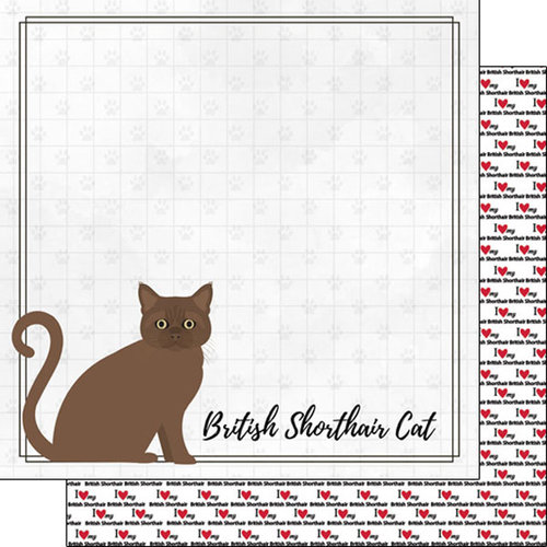 Scrapbook Customs - I Love My Cat Collection - 12 x 12 Double Sided Paper - British Shorthair - Breed