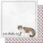 Scrapbook Customs - I Love My Cat Collection - 12 x 12 Double Sided Paper - Exotic Shorthair - Breed