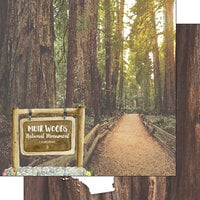 Scrapbook Customs - America the Beautiful Collection - 12 x 12 Double Sided Paper - California - Muir Woods National Monument Watercolor