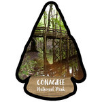 Scrapbook Customs - United States National Parks Collection - Laser Cut - Watercolor - Congaree National Park