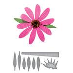 Spellbinders - D-Lites Die - Echinacea
